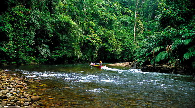 Ulu Temburong Nationalpark © David Kirkland, Sabah Tourism