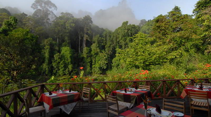 Borneo Rainforest Lodge Restaurant © Borneo Rainforest Lodge