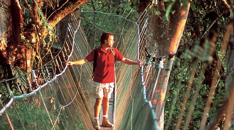 Canopy Walk in Poring © Sabah Tourism Board