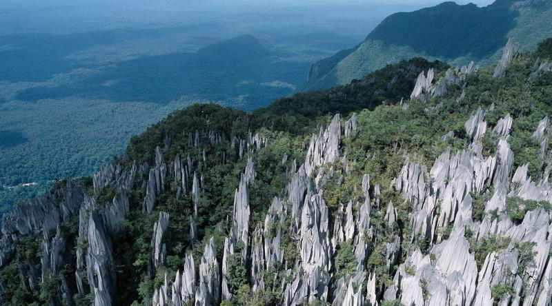 Felsformation im Mulu Nationalpark © Sarawak Tourism Board