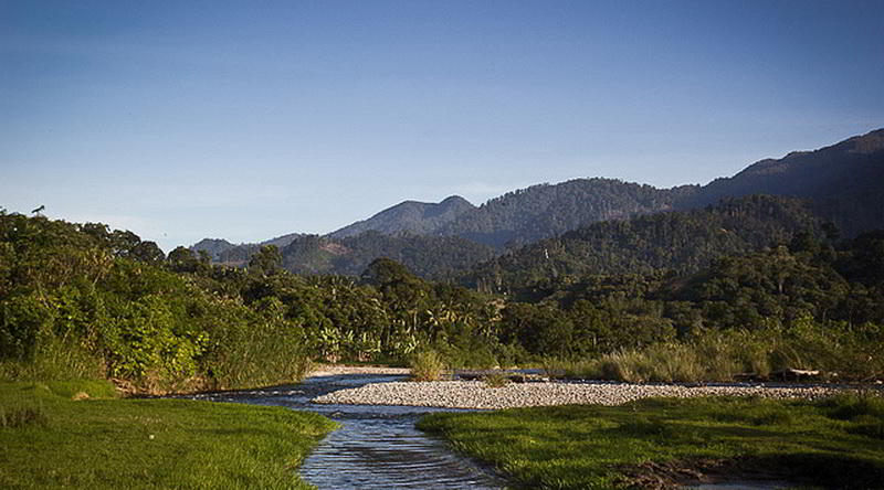 Leuser Nationalpark © Ministry of Culture and Tourism, Republic of Indonesia